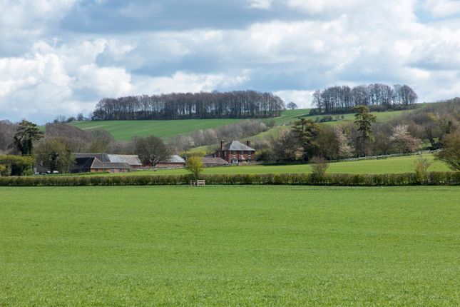 Thumbnail Country house for sale in Warborough Farm, Letcombe Regis, Wantage, Oxfordshire