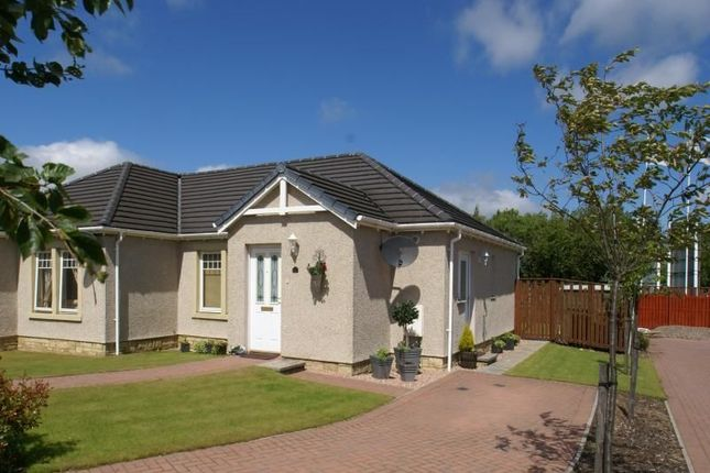 Thumbnail Bungalow to rent in Chestnut Crescent, Leven