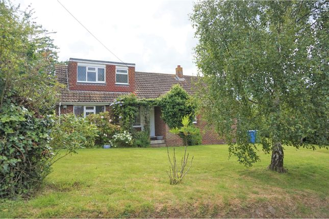 Thumbnail Detached bungalow for sale in Chestnut Wood Lane, Sittingbourne