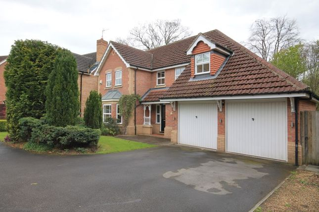 Thumbnail Detached house for sale in Hermitage Gardens, Chester Le Street