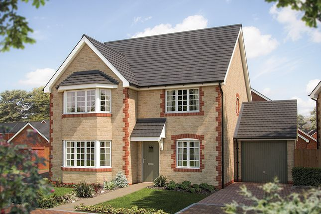 """Thumbnail Detached house for sale in """"The Oxford"""" at Coxwell Road, Faringdon"""