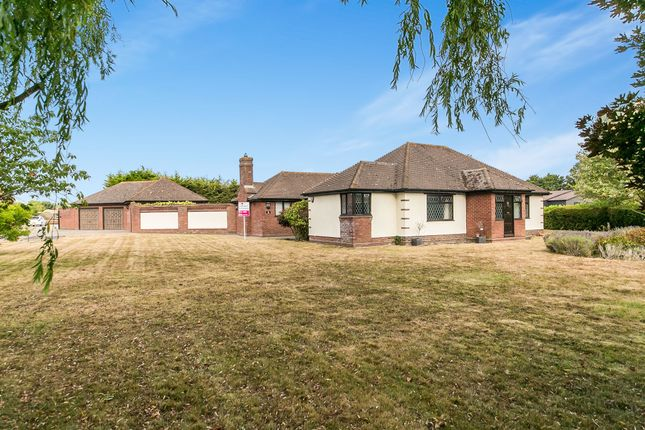 Thumbnail Detached bungalow for sale in Great Tey Road, Little Tey, Colchester