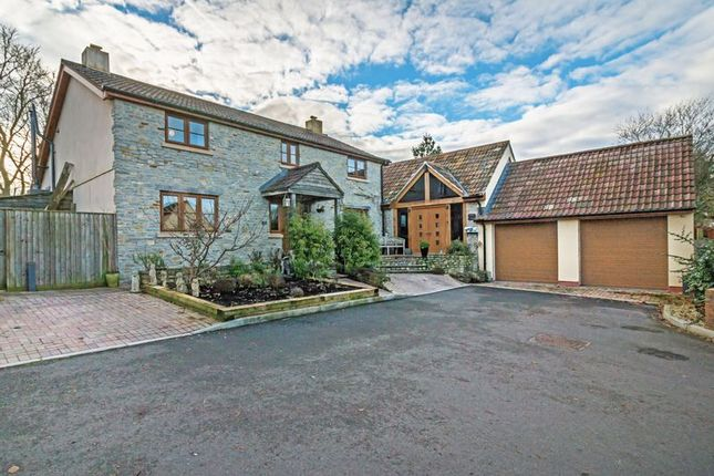 Thumbnail Detached house for sale in Catcott, Bridgwater