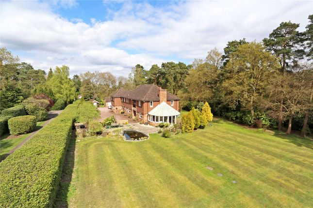 Thumbnail Detached house for sale in Gong Hill Drive, Lower Bourne, Farnham, Surrey