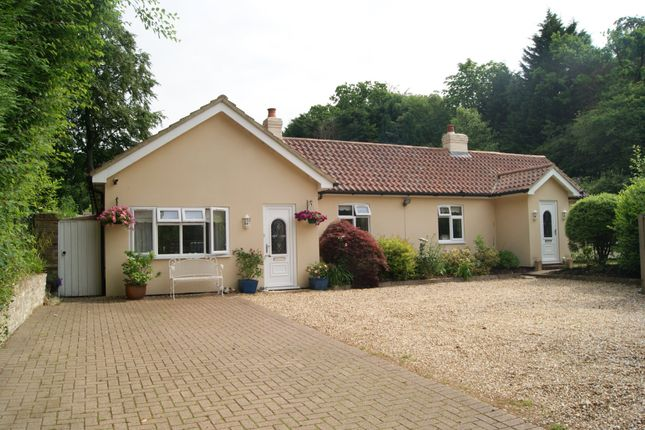Thumbnail Detached bungalow for sale in Frimley Road, Ash Vale, Guildford, Surrey