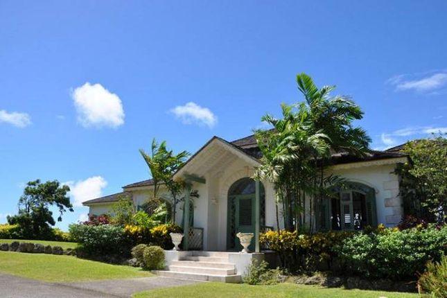 Chukkas Reduced Lion Castle Saint Thomas Barbados 4