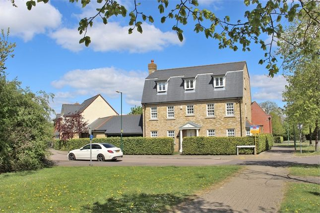Thumbnail Detached house for sale in Great Notley, Braintree, Essex