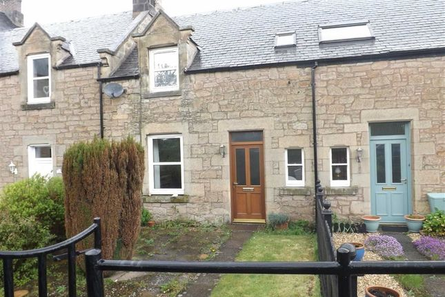 Thumbnail Cottage to rent in Duns