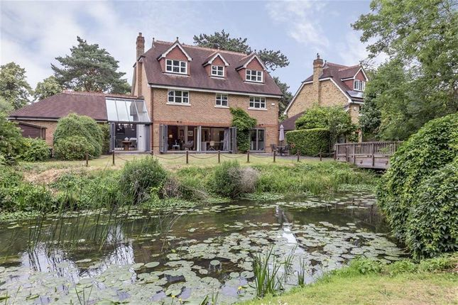 Thumbnail Property for sale in The Wilderness, East Molesey
