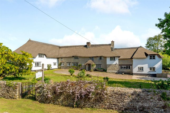 Thumbnail Detached house for sale in Buckerell, Honiton, Devon