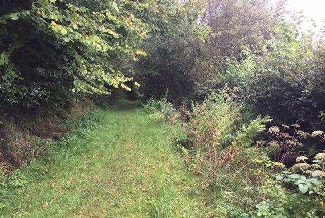 Img_2893 of North Buckland, Braunton EX33