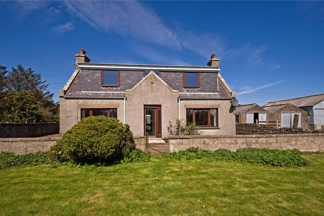 Thumbnail Detached house for sale in Greystone, Hatton, Peterhead, Aberdeenshire