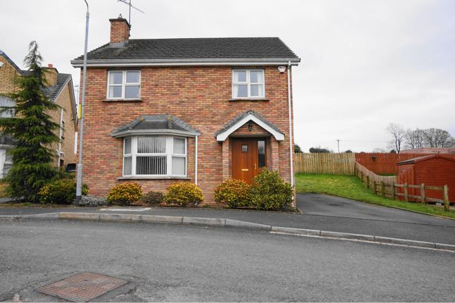 Thumbnail Detached house for sale in Brookfield Mews, Dungannon