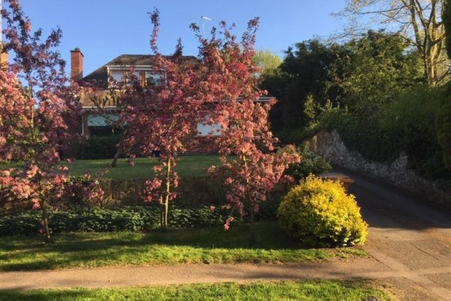Thumbnail Property for sale in Monsom Lane, Repton, Derby