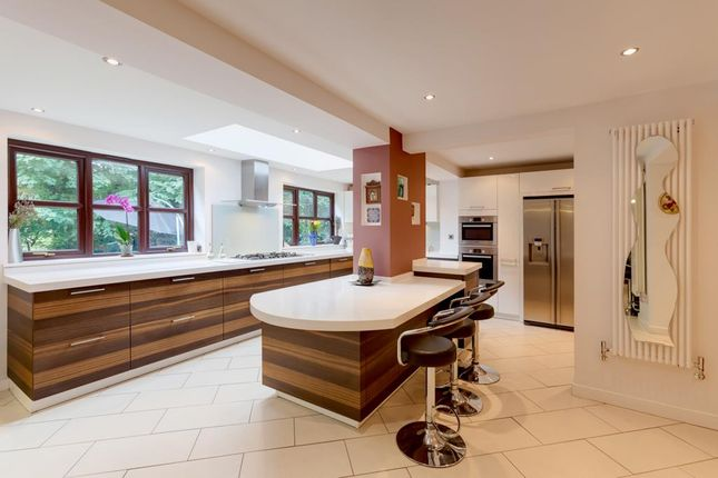 Thumbnail Property for sale in Abbey Lane Dell, Sheffield