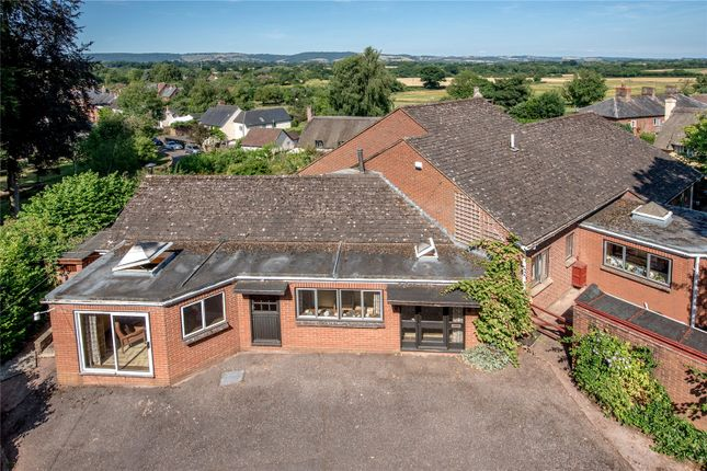 Thumbnail Bungalow for sale in Halse, Taunton, Somerset