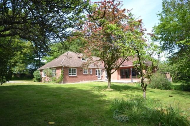 Thumbnail Detached house for sale in Maidstone Road, Pembury, Tunbridge Wells, Kent