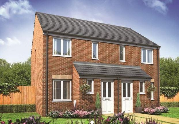 Thumbnail Semi-detached house for sale in Plot 114 Alnwick, Hampton Gardens, Hampton, Peterborough