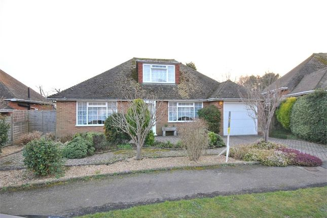 Thumbnail Property for sale in Riders Bolt, Bexhill-On-Sea, East Sussex
