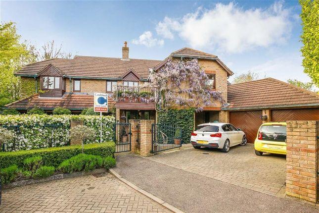 Thumbnail Property for sale in Ketelbey Nook, Old Farm Park, Milton Keynes, Bucks