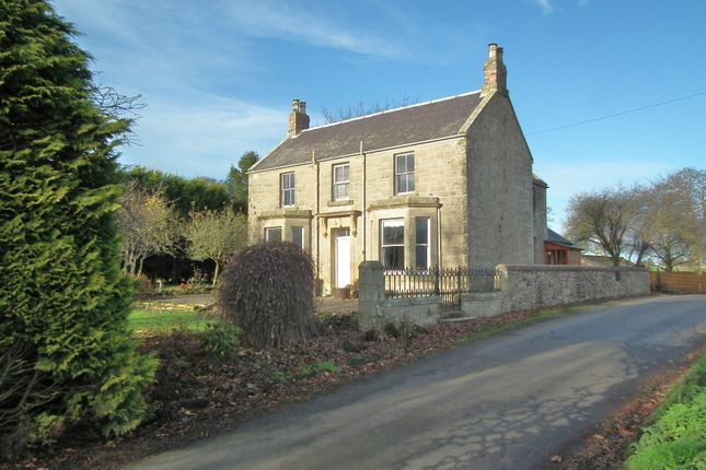 Thumbnail Detached house for sale in Whitsome, Duns