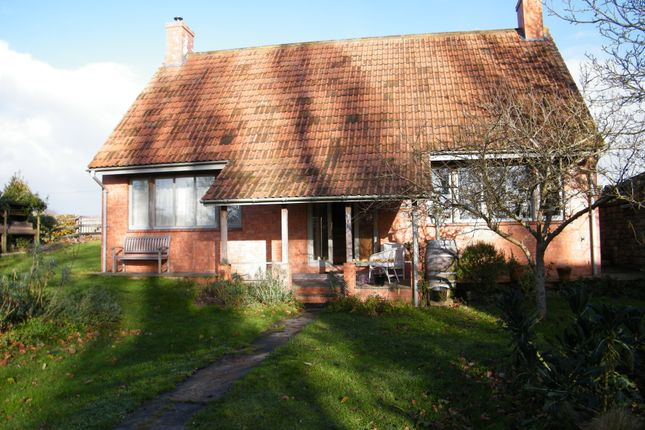Thumbnail Flat to rent in Stanmoore Road, Burrowbridge