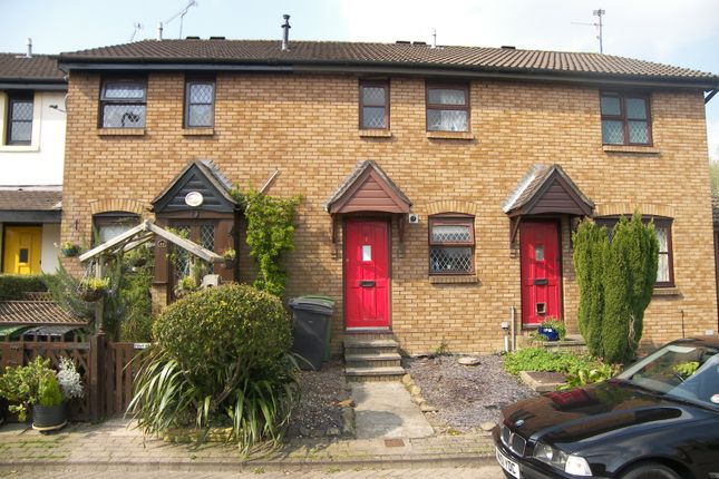 Thumbnail Terraced house to rent in Riversdale, Llandaff, Cardiff