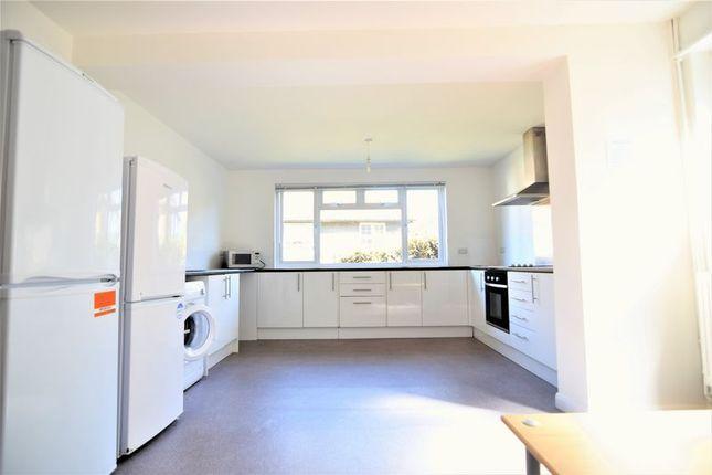 Thumbnail Property to rent in Elm Grove, Brighton