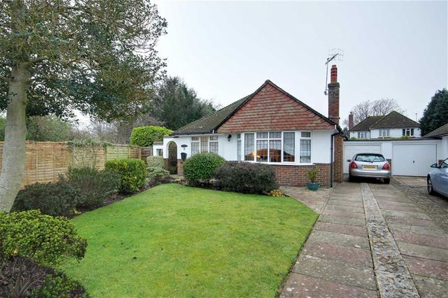Thumbnail Detached bungalow for sale in Hall Close, Offington, Worthing, West Sussex