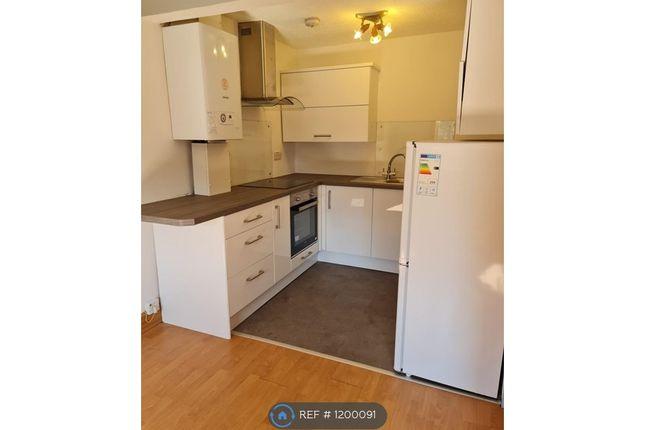 Thumbnail Flat to rent in Falkirk Road, Larbert