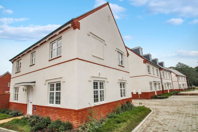Thumbnail Detached house to rent in Iris Close, Colchester
