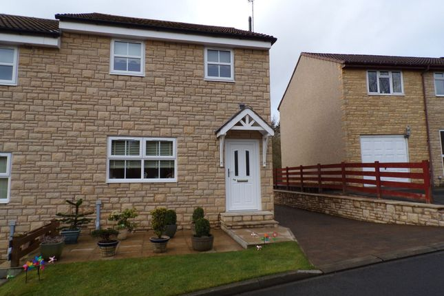 Thumbnail Semi-detached house for sale in Meadow Grange, Haltwhistle