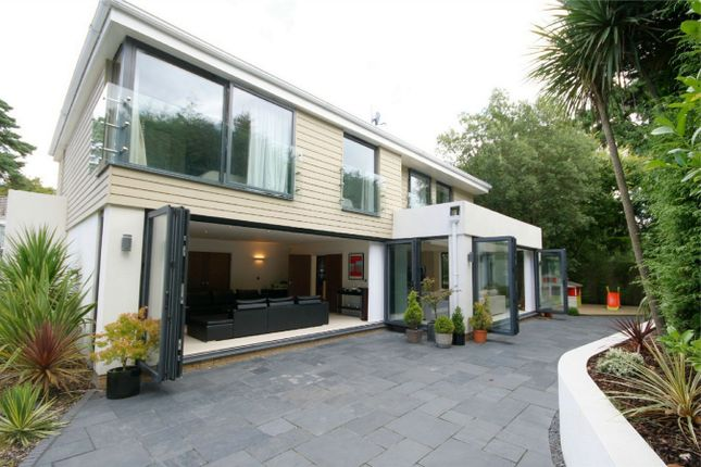 Thumbnail Detached house for sale in The Avenue, Branksome Park, Poole, Dorset
