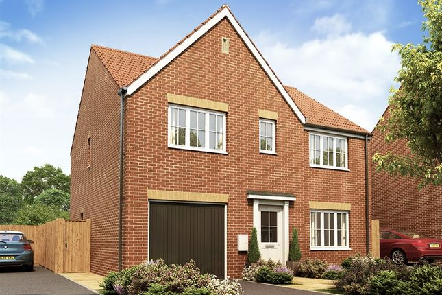 """Thumbnail Detached house for sale in """"The Winster"""" at Dorman Avenue North, Aylesham, Canterbury"""