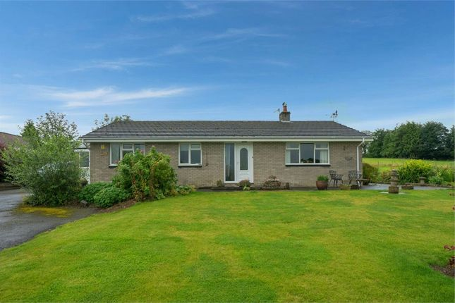 Thumbnail Detached bungalow for sale in Llanddewi, Llandrindod Wells, Powys