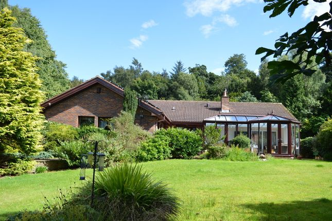 Thumbnail Detached bungalow for sale in Eagle Drive, Longridge, Berwick Upon Tweed, Northumberland