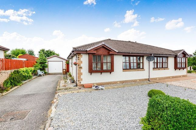 Thumbnail Bungalow for sale in Miller Street, Inverness