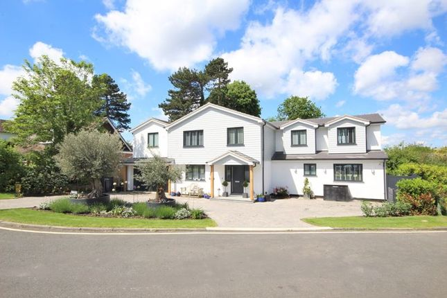 Thumbnail Detached house for sale in Mallard Way, Hutton, Brentwood