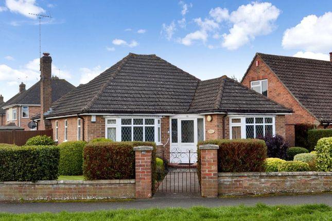 Thumbnail Detached bungalow for sale in Corkscrew Lane, Taunton, Somerset