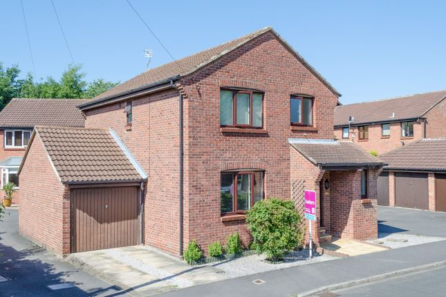 Thumbnail Detached house to rent in Weddall Close, York