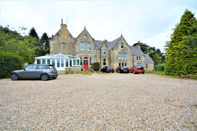 Thumbnail Detached house for sale in Low Etherley, Bishop Auckland, Durham