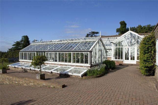 Greenhouse of Penshurst Road, Penshurst, Tonbridge, Kent TN11