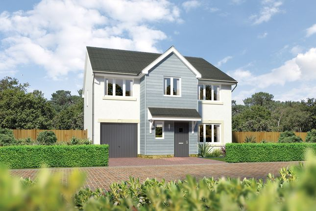 "Thumbnail Detached house for sale in ""Heddon"" at East Calder, Livingston"