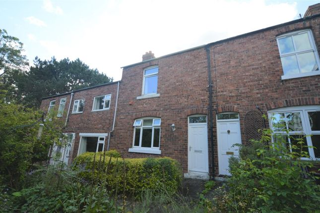 Thumbnail Terraced house to rent in Grays Terrace, Crossgate Moor, Durham