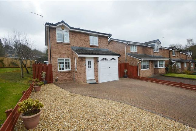 Thumbnail Detached house for sale in Clove Mill Wynd, Larkhall