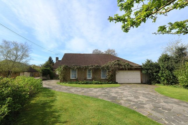Thumbnail Detached bungalow for sale in Bramble Road, Daws Heath, Hadleigh