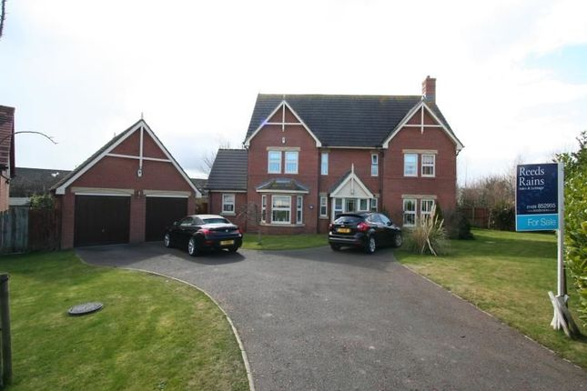 Thumbnail Detached house for sale in Kingfisher Close, Bishop Cuthbert, Hartlepool