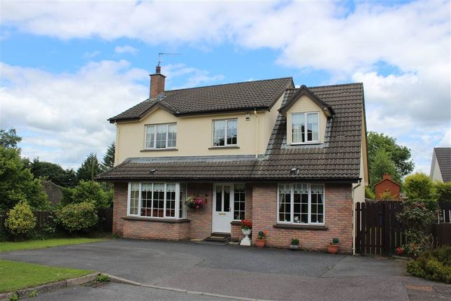 Thumbnail Detached house for sale in Chancellors Rd, Newry