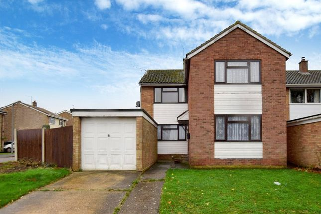 Thumbnail Detached house for sale in Ramsey Road, Halstead, Essex