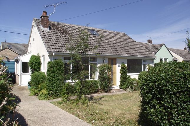 Thumbnail Detached bungalow to rent in Rectory Close, Broadmayne, Dorchester